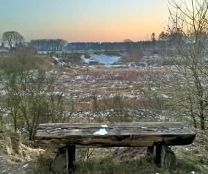 Das Projekt FingerTips & DaumenGrün in Rethorn