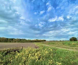 Impressionen vom Rethorner Feld
