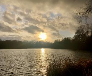 Stimmungsbild am Kamerner See